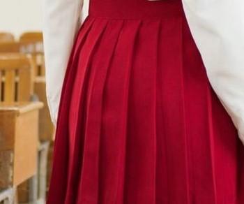 skirt-school